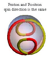 proton positron spin direction